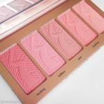 Tarte Bling It On Amazonian Clay Blush Palette
