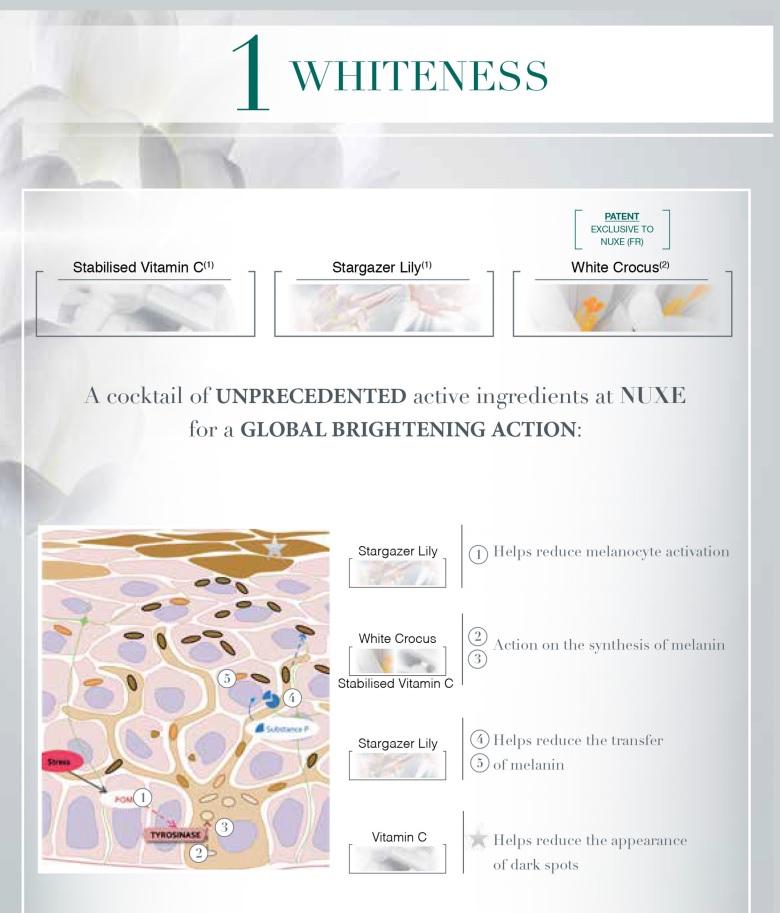 Nuxe White Brightening Moisturizing Emulsion